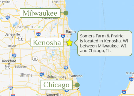 Somers Farm and Prairie in Kenosha, WI