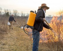Chris Powers and Charles Heide initiate a controlled burn.